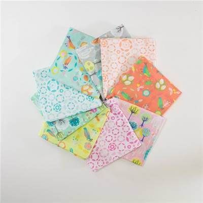 BUNDLE -9 COUPONS ASSORTIS 45 X 55 CM QUILT WEAVES - STEP INTO SPRING